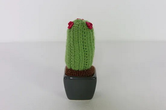Hand crochet cactus with little red flowers